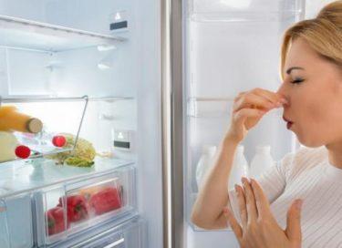 Mauvaises odeurs d'un mini-frigo